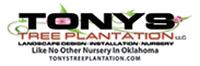 Tony's Tree Plantation