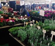 Oakdale-Greenhouses